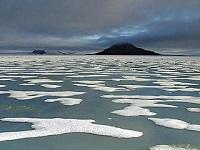 Арктический лед так и не смог восстановиться. 282634.jpeg