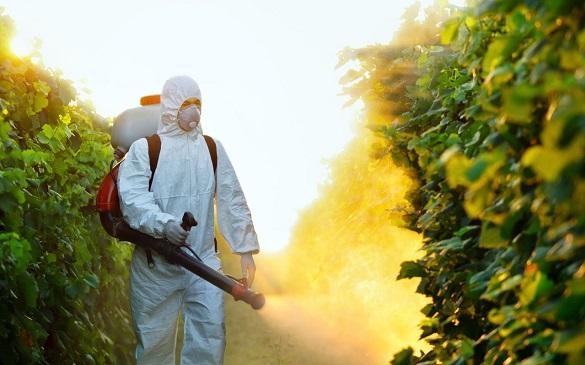 С комарами борьба – больше пользы или вреда?