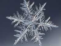 Республику Коми накрыло майским снегом