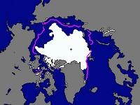 Арктический лед так и не смог восстановиться. 282635.jpeg