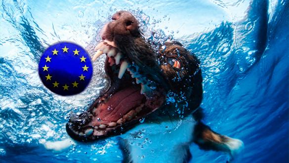 Елена Гуськова: Шавки ЕС вспомнят о России, когда им будет выгодно. 290640.jpeg