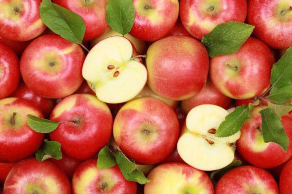 Сербия: Решена проблема с экспортом яблок в Россию. яблоки