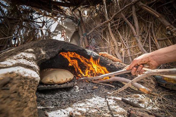 Ученые узнали древнейший рецепт хлеба. 389641.jpeg