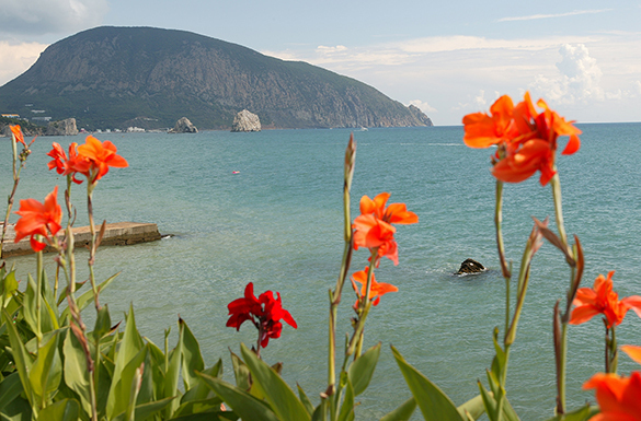 Туристический сезон принес Крыму 60 млрд рублей. 296643.jpeg