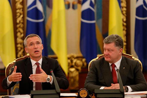 Порошенко рассказал о политиках, не верящих в членство Украины в НАТО. Порошенко рассказал о политиках, не верящих в членство Украины в
