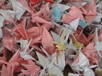Российские школьники и учителя обменяются бумажными журавликами