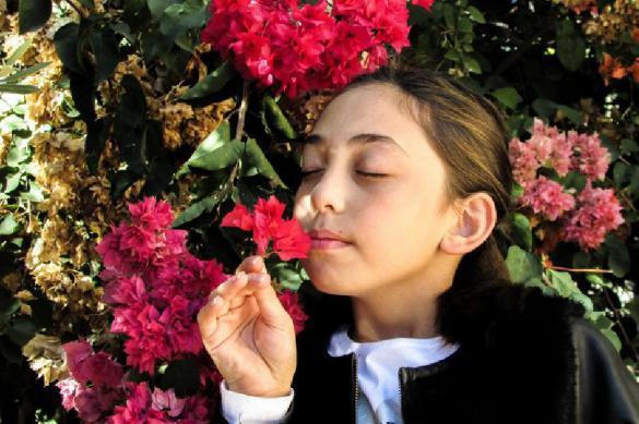 Ученые: к запахам нужно принюхиваться. 380662.jpeg