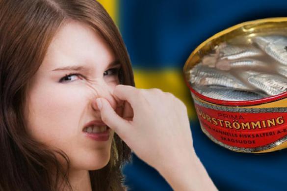 В Швеции откроют Музей отвратительной еды. 392667.jpeg