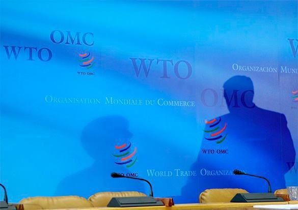 Курс России на импортозамещение вызывает обеспокоенность США. ВТО