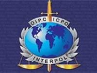 Россия получила прямой доступ к базам Интерпола