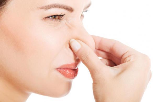 Разрешите вас... понюхать: как запахи влияют на дамскую привлекательность. 392673.jpeg
