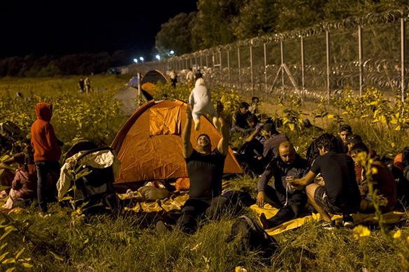 Трамп запрещает, Европа впускает: беженцев решили легализовать. 376678.jpeg