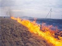 Весенние травяные палы сжигают Россию. 282679.jpeg