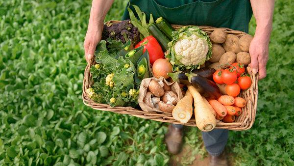 Органическое земледелие - с чем его едят?. органическое земледелие