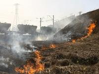 Весенние травяные палы сжигают Россию. 282680.jpeg