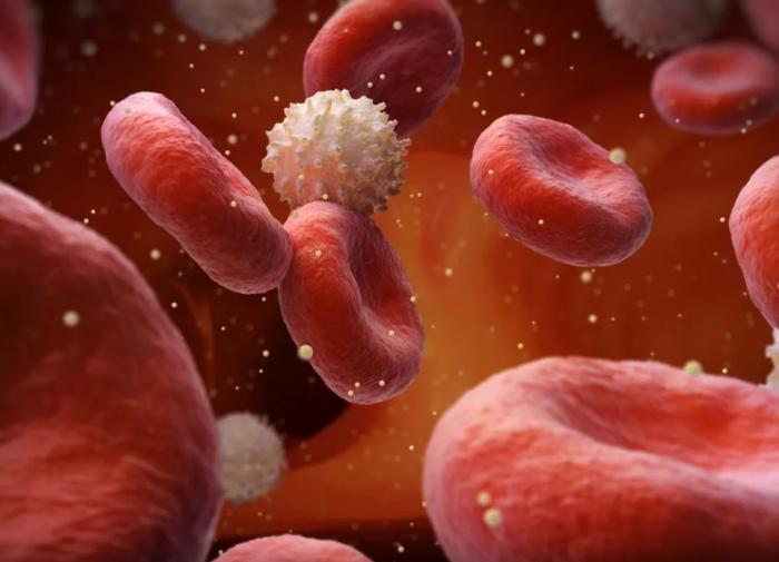 Россия и Украина обменялись дипломатами. Высланными...