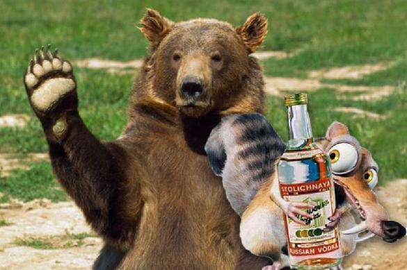 И снова Омск: в Сибири страдают даже медведи. 391682.jpeg