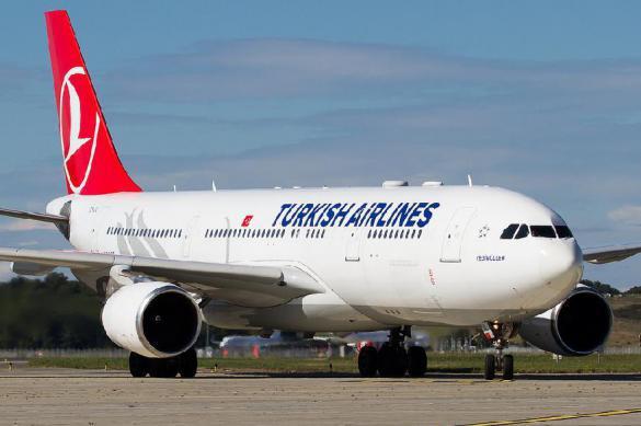 Турецкая авиакомпания задержала рейс из-за шуток о бомбе в багаже. 384683.jpeg