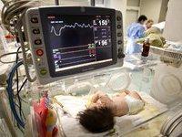 В Нью-Йорке ребенок родился после смерти своих родителей. 281684.jpeg