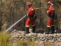 С Ибицы из-за пожаров эвакуируют туристов. 245687.jpeg