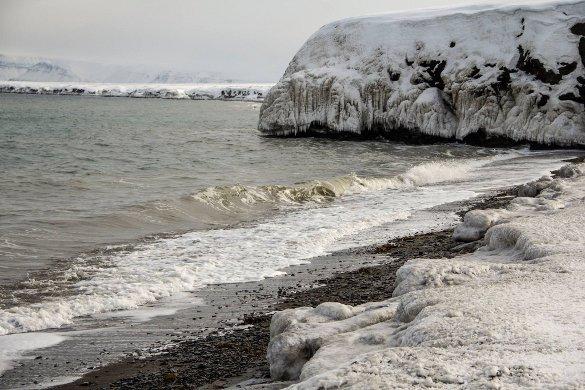 берег, Арктика