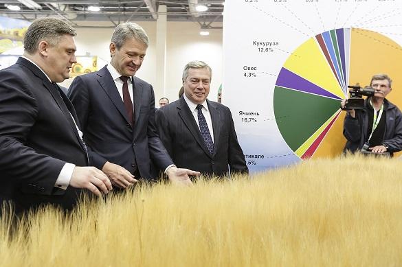 Донские хлеборобы побили рекорды по сбору урожая хлеба. Донские хлеборобы побили рекорды по сбору урожая хлеба