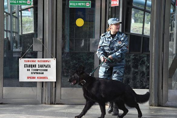 Вместо забастовки: вся польская полиция