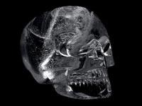 Украден хрустальный череп – главный трофей нового «Индианы
