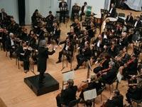 Музыканты интернет-оркестра впервые выступят на публике