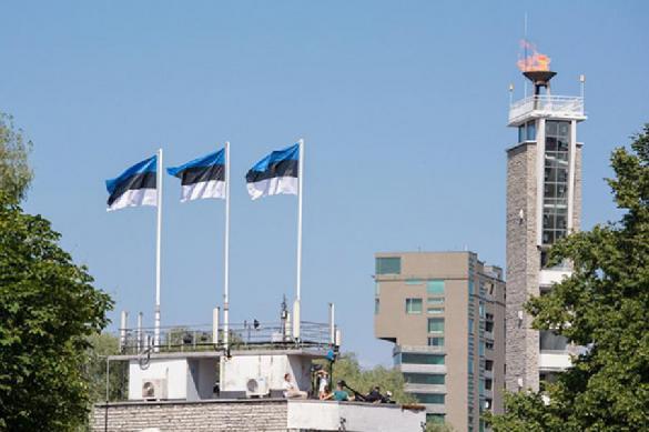 Чиновников эстонского Таллина раскритиковали за афиши на русском языке. 398700.jpeg