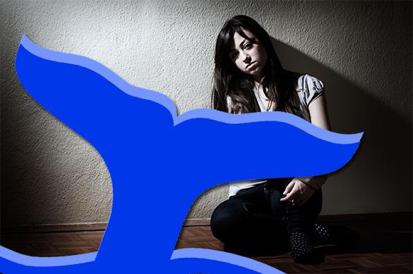 BBC бьет тревогу: Синий кит убивает детей в Британии