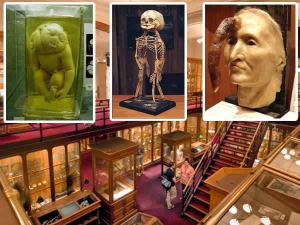 Пять самых жутких мест на планете. Музей Мюттера (Филадельфия, штат Пенсильвания, США)