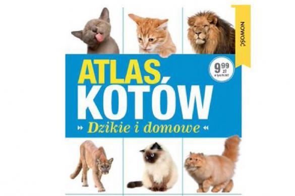 Качиньского застукали с котиками на заседании Сейма. 379713.jpeg