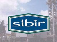 Акции Sibir Energy остались у Руслана Байсарова
