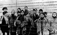 Поляки отправляют своих заключенных в Аушвиц на перевоспитание