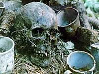 В Ленинградской области захоронят останки тысячи советских