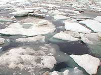 Подтаявшие арктические льды могут угрожать четверти населения