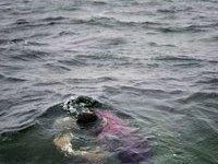 В Персидском заливе утонуло иранское судно. 247719.jpeg