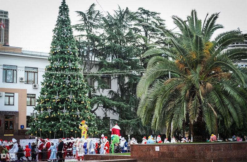 Сочи, Москва и Петербург станут местами новогоднего отдыха россиян. Сочи, Москва и Петербург станут местами новогоднего отдыха росси