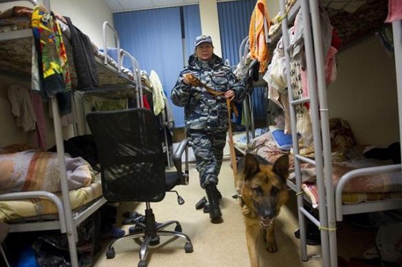 Полицейские Подмосковья  пресекли фиктивную постановку на учет иностранных граждан. 397725.jpeg