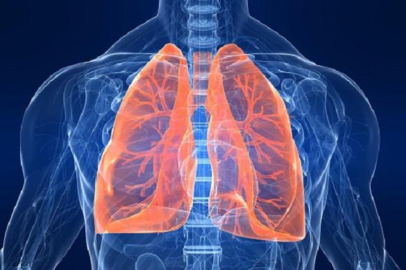 Бытовую химию назвали причиной опасной болезни легких. 375726.jpeg