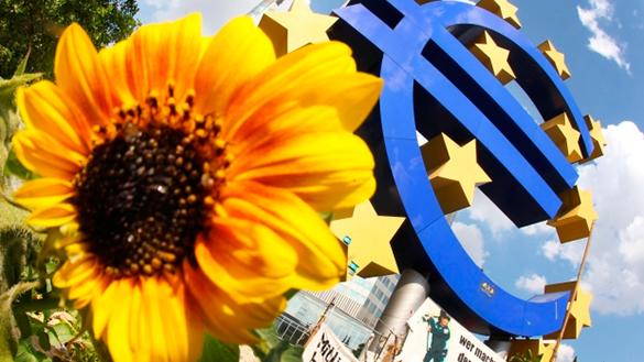 евро и подсолнух