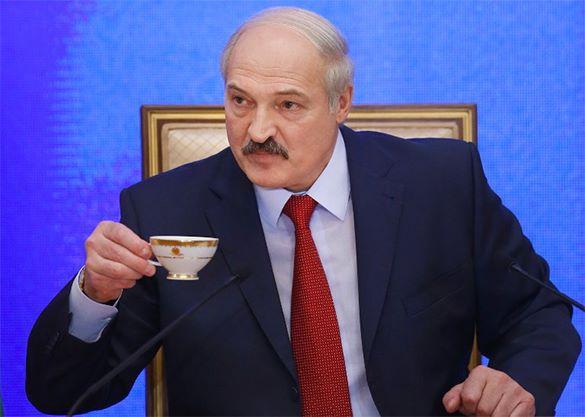 Александр Лукашенко с чашкой