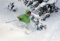 За убитую лыжницу немецкий министр заплатит 33 тысячи евро