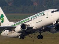 Атакованный скворцами Boeing совершил вынужденную посадку