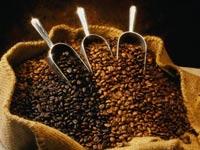 Уго Чавес хочет национализировать кофе