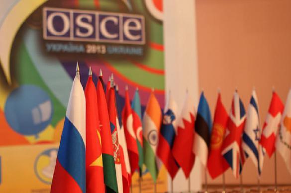 ОБСЕ шокирована украинским списком