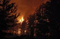 МЧС просит россиян не разжигать костры на природе. fires