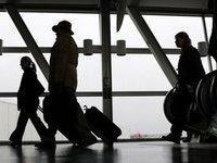 Пассажир лондонского аэропорта вез в багаже 90 кг сушеных гусениц. 281756.jpeg