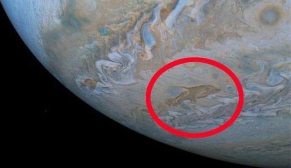 Спутник увидел на Юпитере дельфина. 395762.jpeg